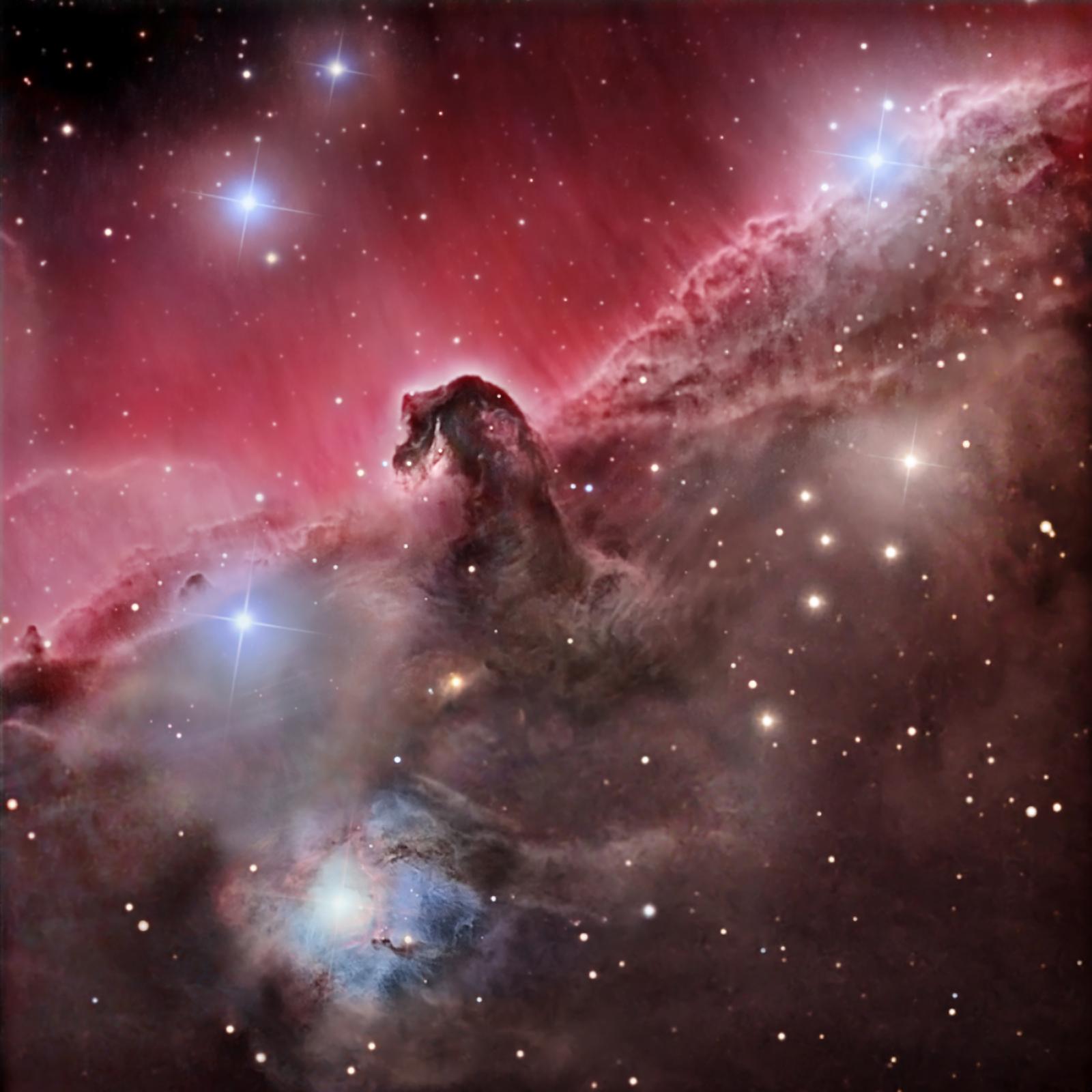 nebula in orion the horsehead nebula - photo #9